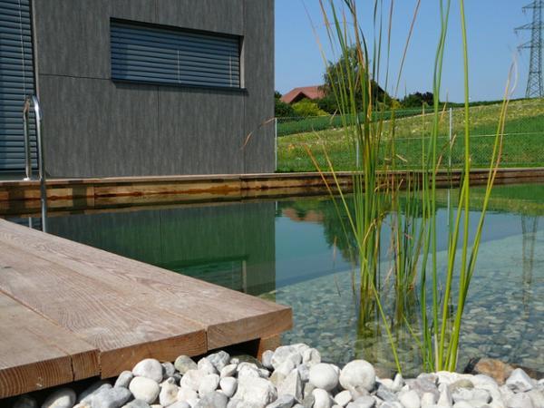 schwimmteichanlage in ohlsdorf bei gmunden