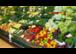 Die steirische Gemüsesaison ist eröffnet!