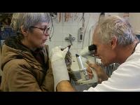 Tierarzt und Biologe Herbert Schramm