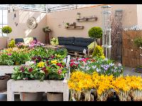 Gartenwelt - ein Platz zum Entdecken von schönen Gestaltungselementen