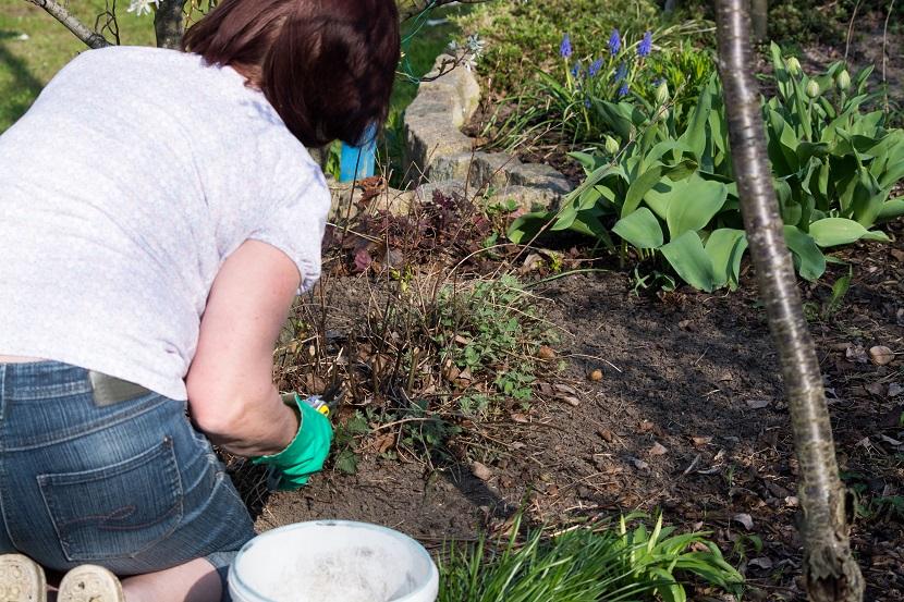Checkliste Garten