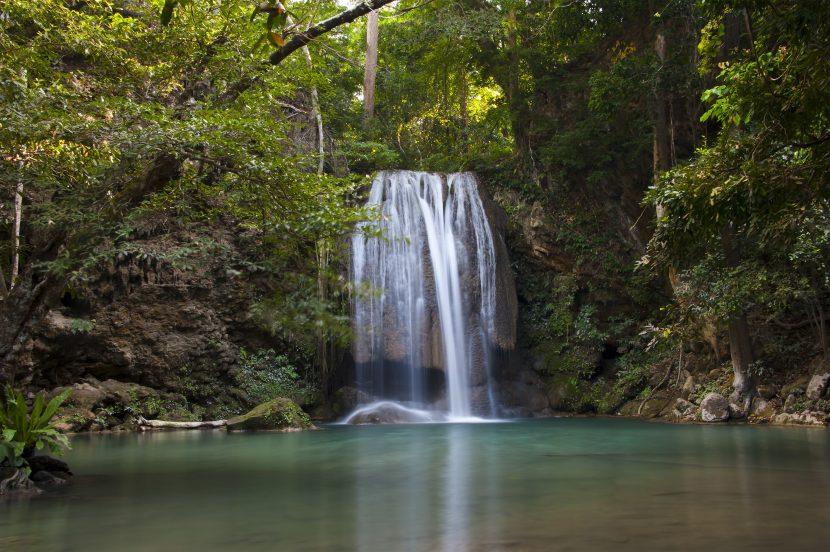 Eine Regenwalddusche im tropischen Regenwald