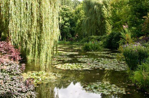 Schöne Gärten
