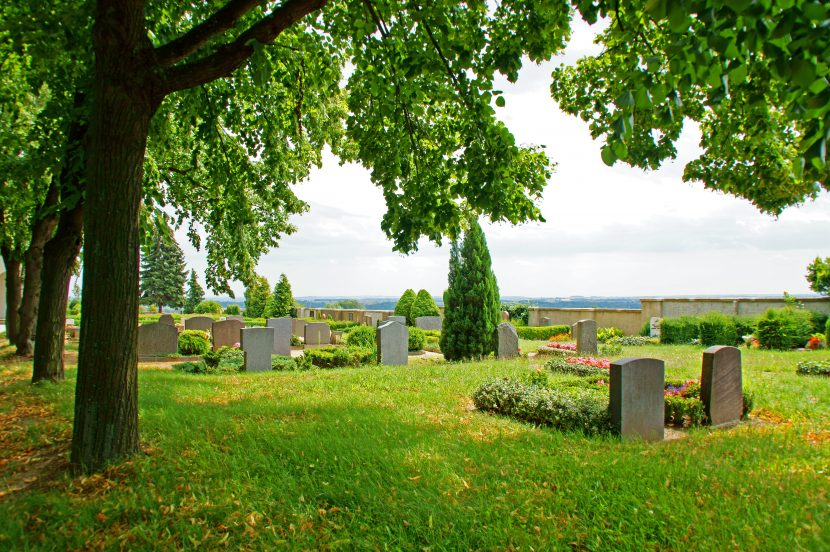 Haustier auf Tierfriedhof begraben