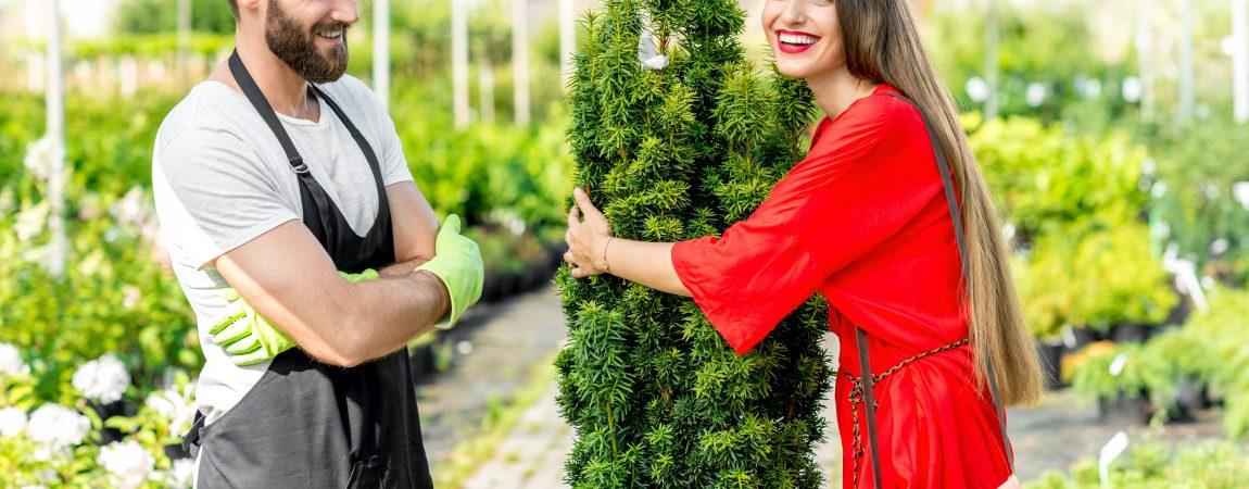 Gartengestaltung mit Profi