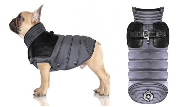 Hundebekleidung für Möpse