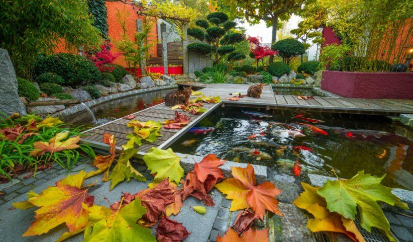 Teich anlegen, Gartenteich