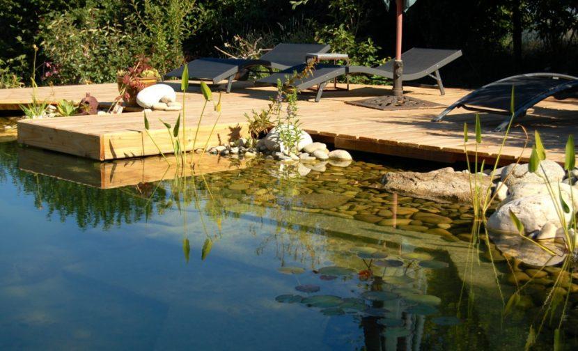 Schwimmteich, Badeteich, Biopool, Naturpool