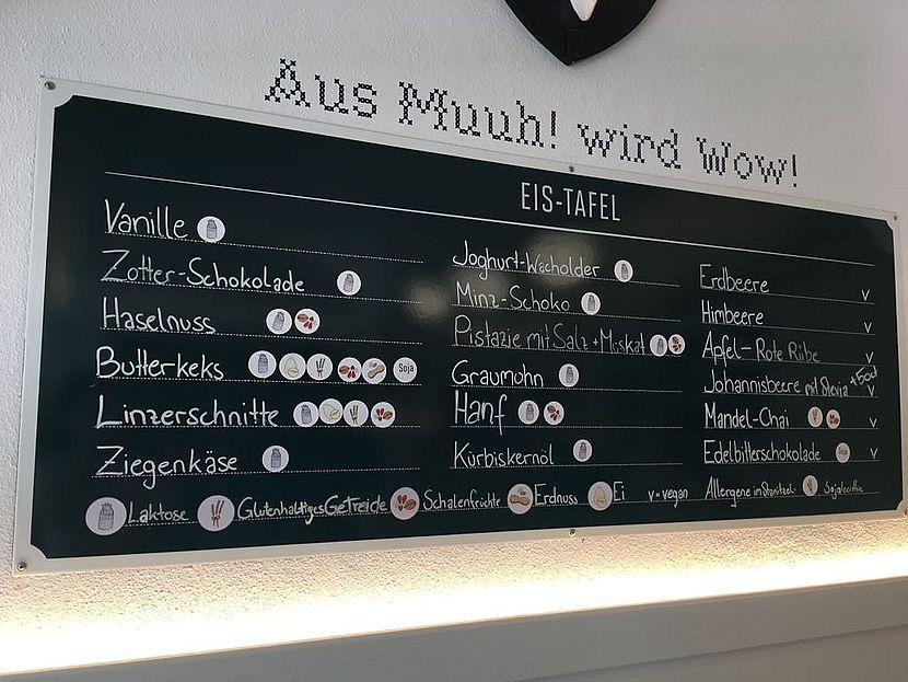 Eissalon Linz - Eisgreissler