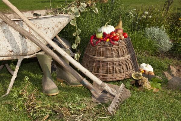 Gartenarbeiten,  © istockphoto, Rakoskerti