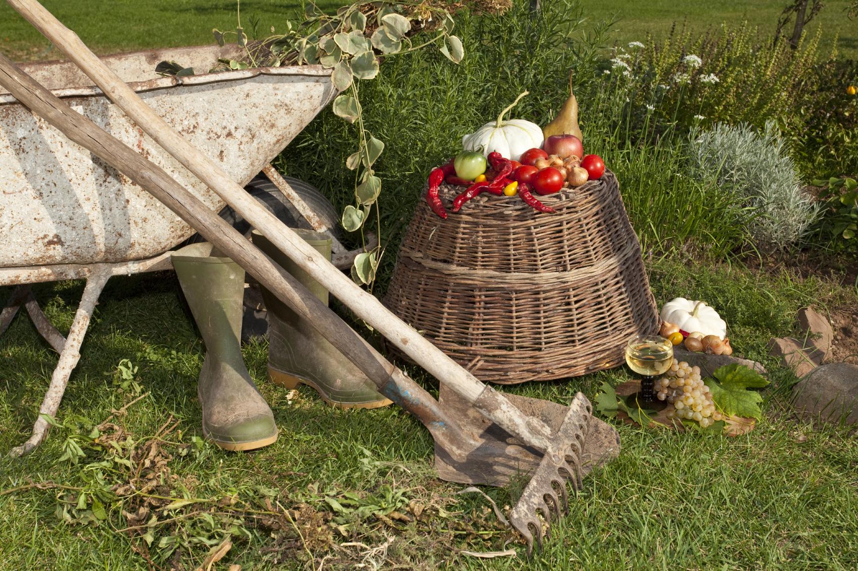 Gartenarbeiten, Gartenwerkzeug, Winterfest, Pflanzen,