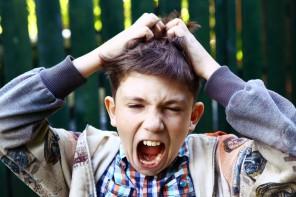 Kopfläuse – wie kann man sie am besten bekämpfen?