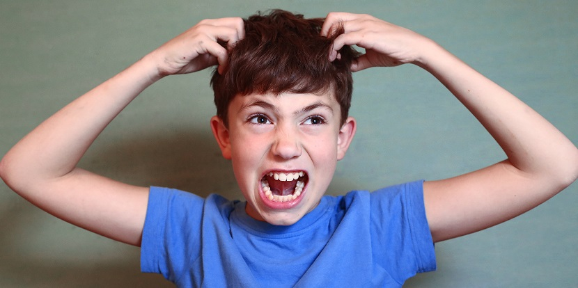 Kopfläuse bekämpfen