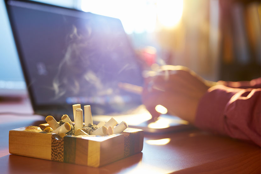 Nikotin Entfernen Türen : raucherwohnung renovieren so verschwinden geruch und nikotin herold ~ Watch28wear.com Haus und Dekorationen