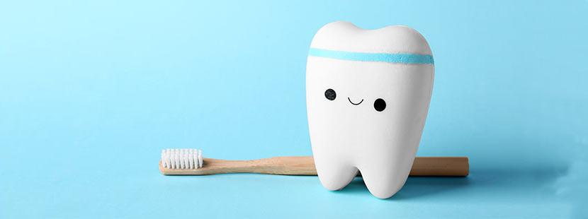 Zähne richtig putzen um Karies zu vermeiden