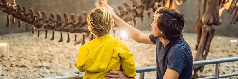 Kindermuseum Wien: Ein Vater zeigt seinem Sohn ein Dinosaurer-Skelett.