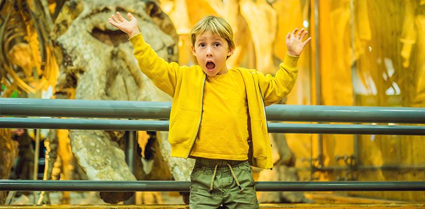 Kindermuseum Wien: Ein Kind im Naturhistorischen Museum in Wien vor einem Dinousaurier-Skelett.