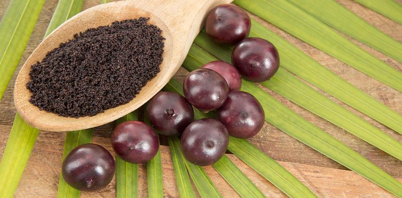 Gesundes Obst: Acai Beeren frisch und als Pulver