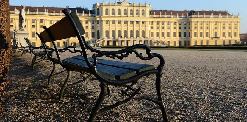 Reihe von Sitzbänken vor dem Schloß Schönbrunn. Körperspende Wien