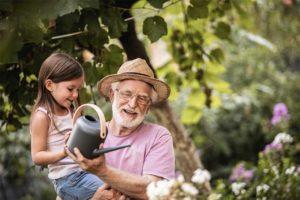 Kleines Mädchen, das seinem Großvater dabei hilft, die Pflanzen zu wässern. Körperspende Wien