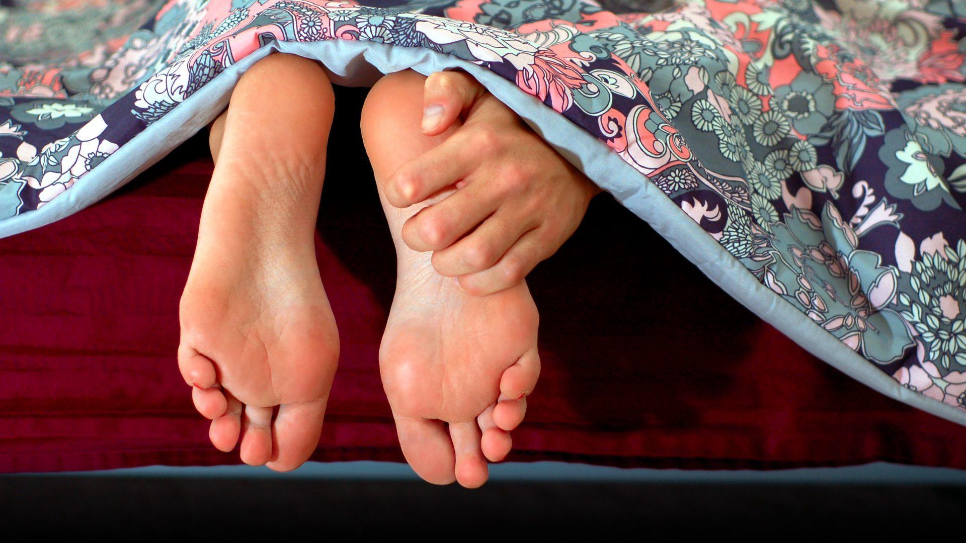 Bettwanzen erkennen, Bettwanze, Menschen, Insekten, Bettwanze.