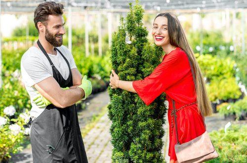 Junge Frau, die im Beisein eines gutaussehenden jungen Gärtners eine Platane umarmt. Was kostet die professionelle Gartengestaltung?