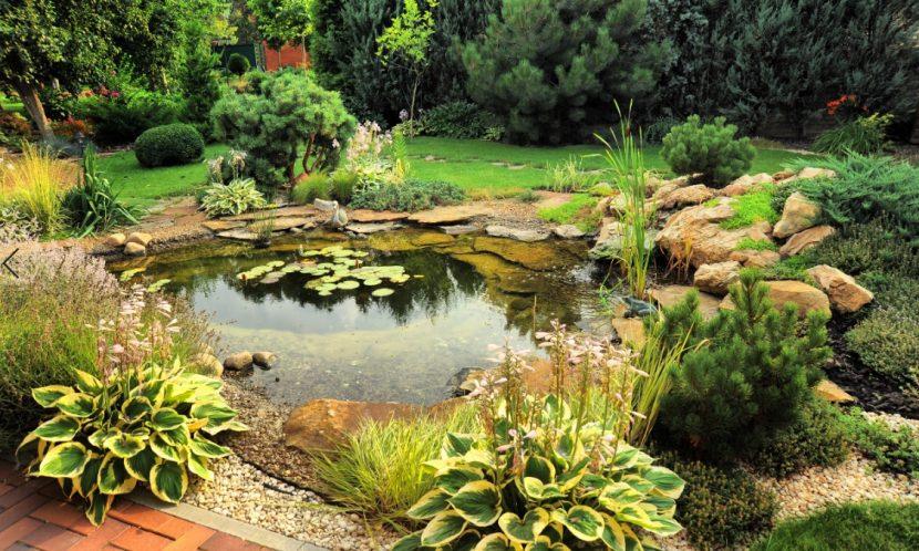 Wunderschönes grünes Biotop mitten in einem professionell angelegten Garten. Was darf Gartenplanung kosten?