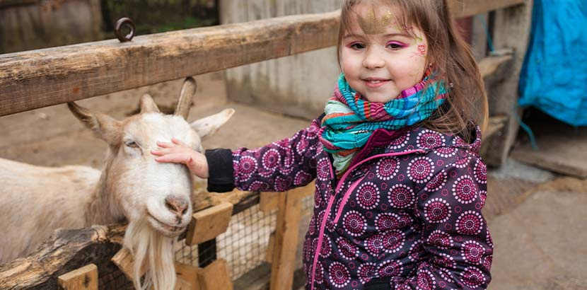 Kleines Mädchen, das beim Wandern in Niederösterreich das Kleintiergegehege besucht und eine Ziege streichelt.