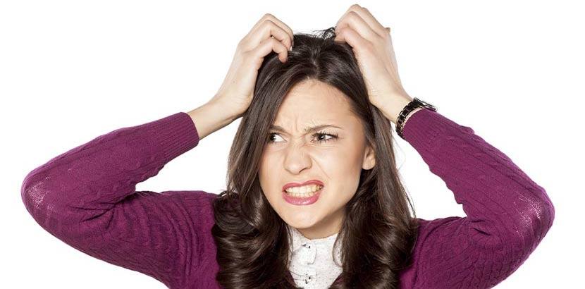 Junge Frau im lila Pullover, die sich den Kopf kratzt, der von Schuppen juckt.