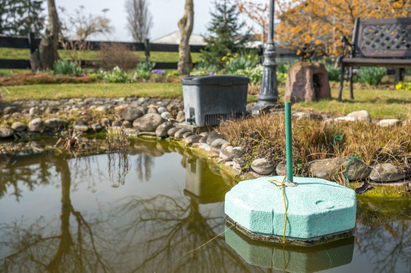 grüner Eisfreihalter aus Styropor schwimmt auf Gartenteich