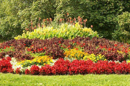 Hügelbeet mit verschiedenen bunten Blumen bepflanzt.