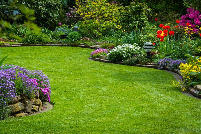 Ein schöner Rasen ohne Unkraut und Moos.