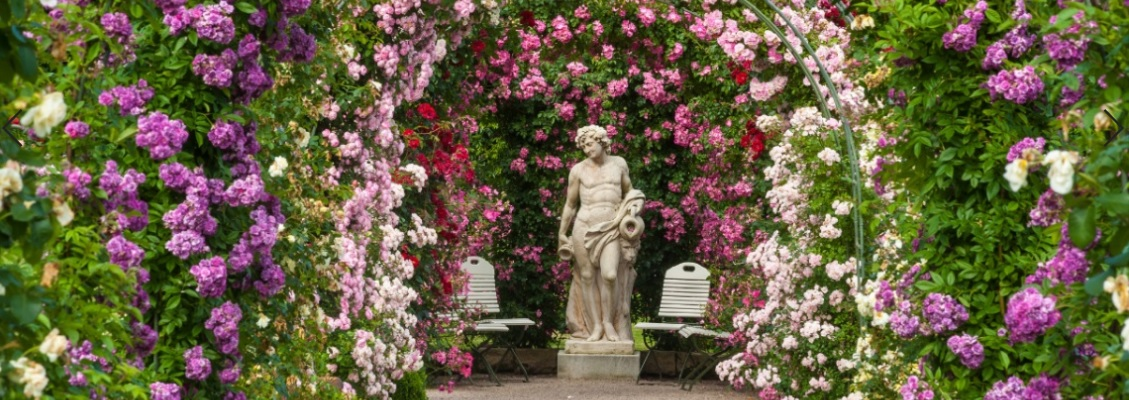 r mische statue unter einem wundersch nen bunten rosenbogen herold verr t wie rosen schneiden. Black Bedroom Furniture Sets. Home Design Ideas
