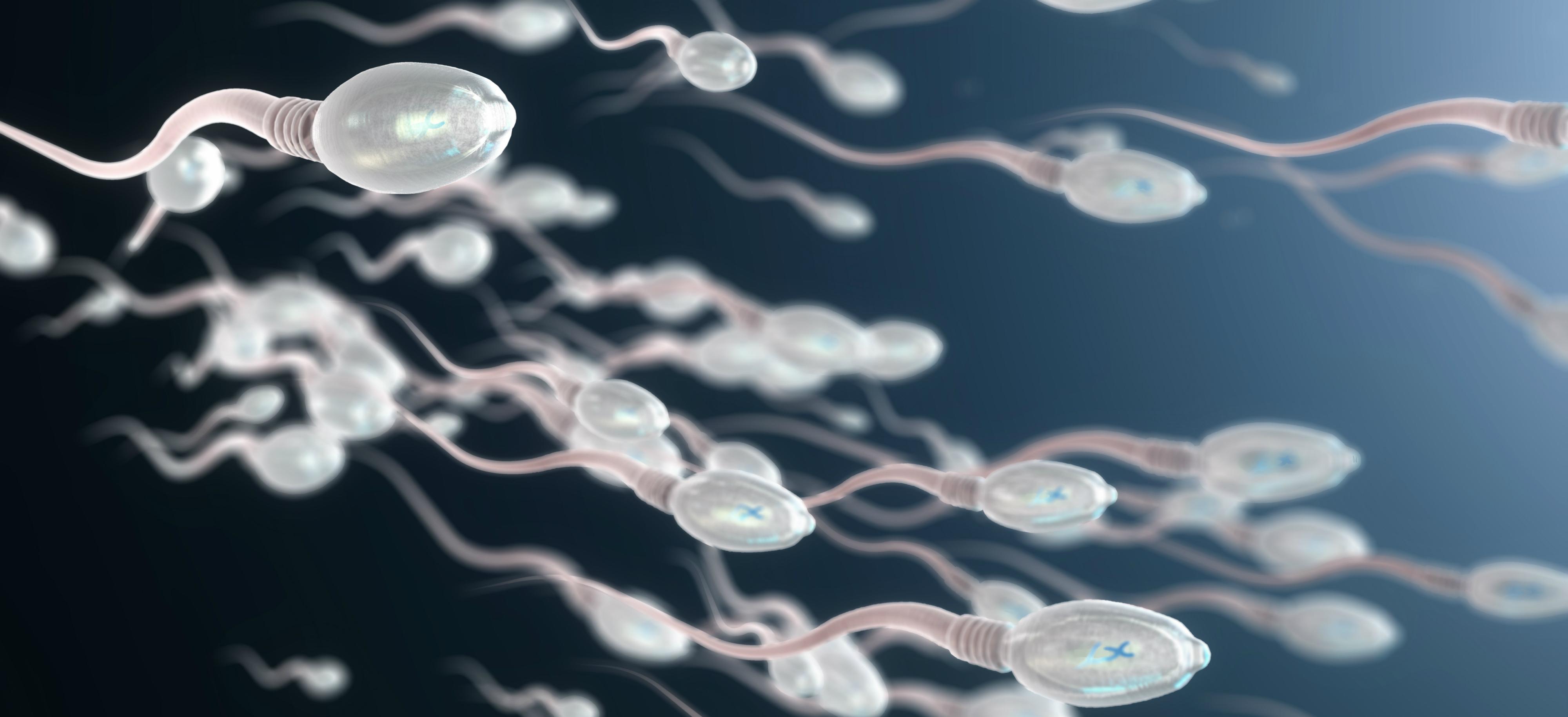 wo macht man ein spermiogramm