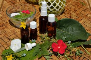 Bachblueten, Bachblüten, Blütentherapie