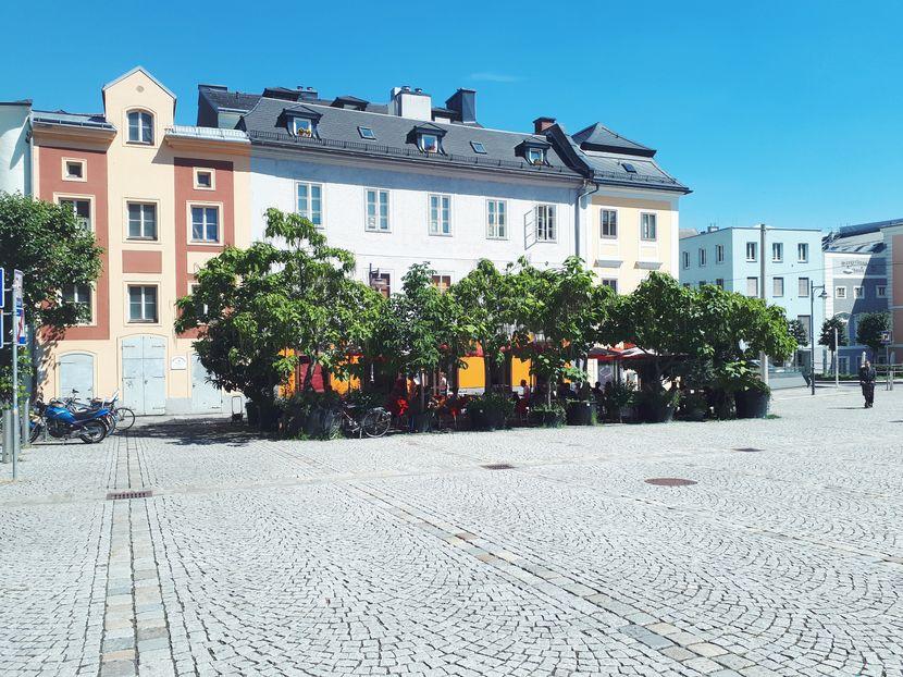 Cafés Linz: Gastgarten Cafe Meier in Linz