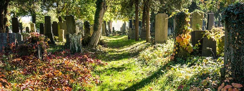 Gang zwischen alten Grabsteinen am Zentralfriedhof Wien.