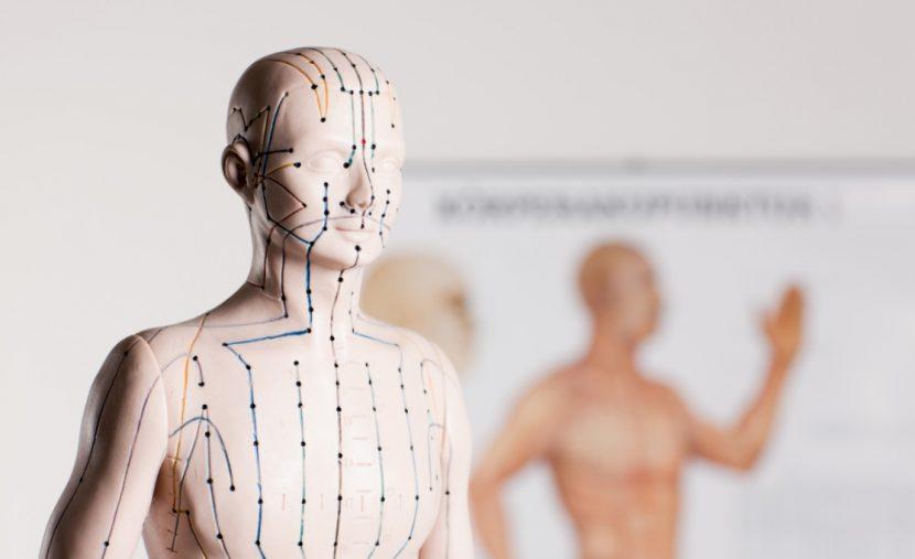 Akupunktur Wien, TCM Ärzte Wien