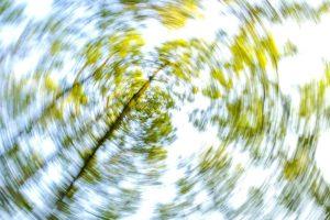 Schwindel - Baum dreht sich verschwommen