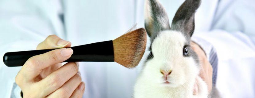 Tierversuchsfreie Kosmetik, vegane Kosmetik wird immer gefragter