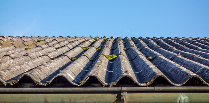 Moos auf Eternit Dach reinigen: Ein Eternitdach mit Moos