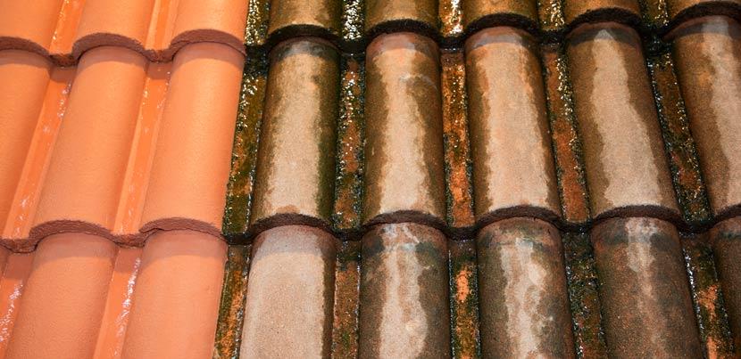 Ein Vergleich von Dachziegeln vor und nach einer Dachreinigung mit Hochdruckreiniger