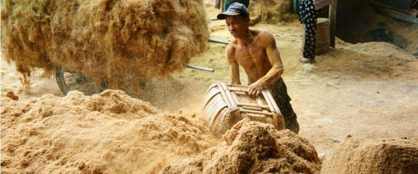 Kokosfaserindustrie