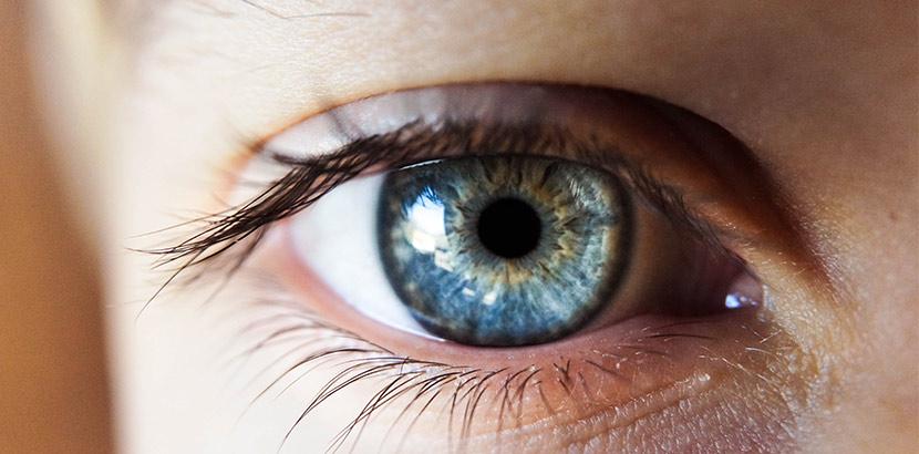 Auge Kontaktlinse