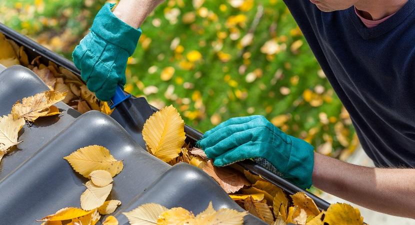 Dachrinne mit Schaufen und grünen Handschuhen reinigen