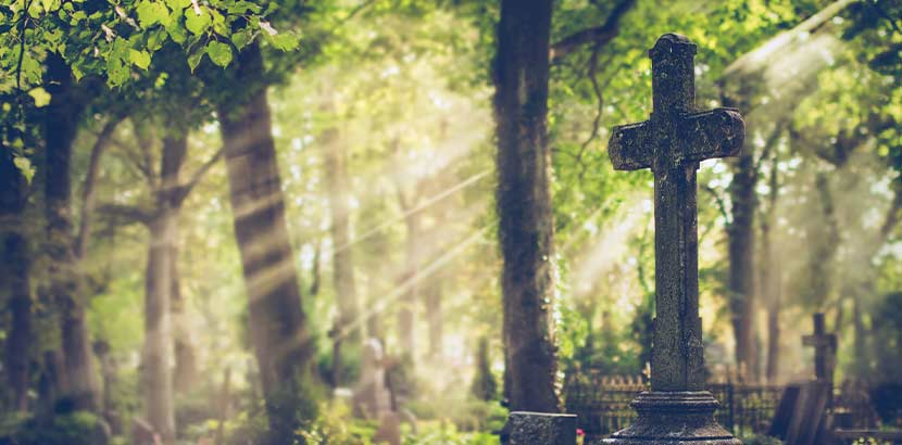 Waldstück, in dem sterbliche Überreste im Rahmen einer Feuerbestattung beigesetzt werden können.