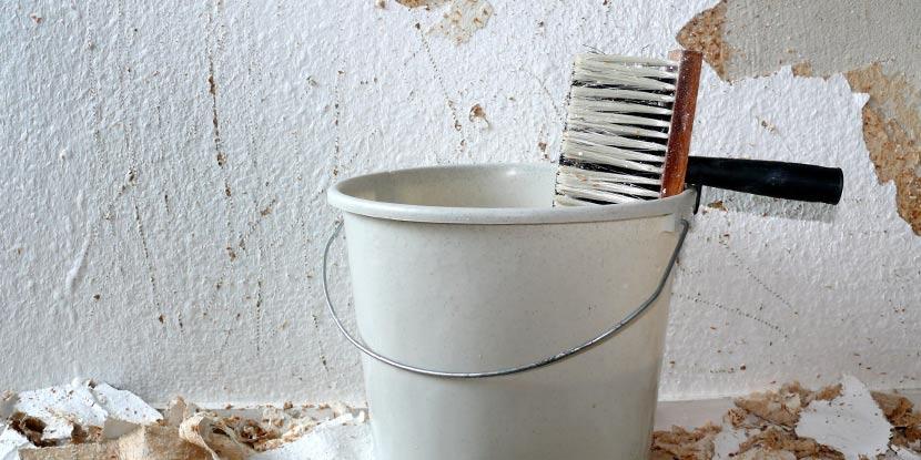 Ein breiter Pinsel, auch Quast genannt, hängt in einem Kübel vor einer Wand, an der alte Tapete entfernt wird.