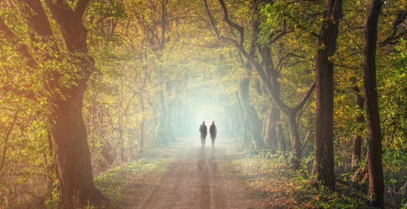 Zwei Menschen, die in einer herbstlichen Allee spazieren gehen. Trauerbegleitung und Trauerhilfe Wien.