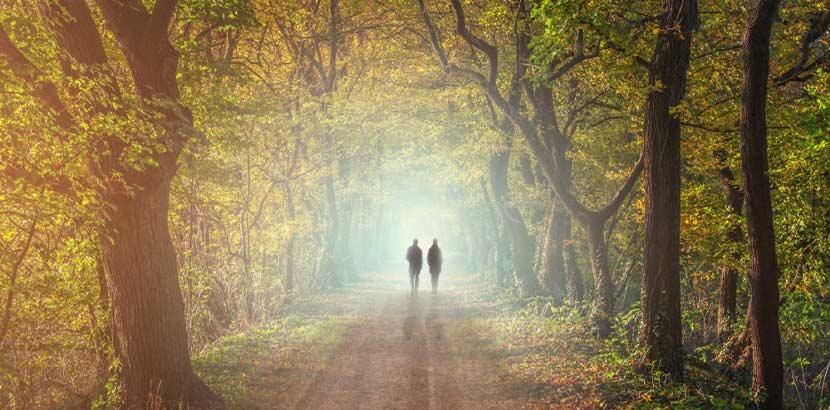 Zwei Menschen, die in einer herbstlichen Allee spazieren gehen. Trauerbegleitung Wien.