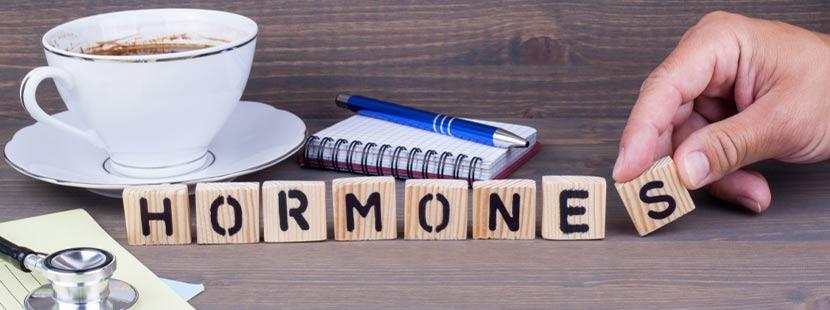 Eine Hand, die das Wort HORMONES mit Bauklötzen legt. Bei der Endokrinologie spielen Hormone eine entscheidende Rolle. Endokrinologe Wien
